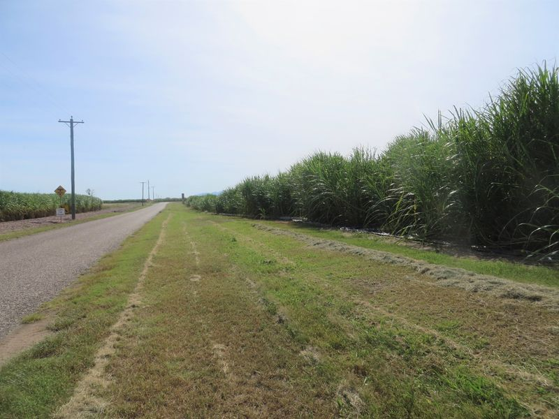 192 Liebrecht Road, Airville QLD 4807, Image 0
