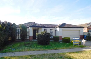 Picture of 25 Pine Road, Shepparton VIC 3630