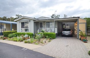 Picture of Unit 93/3197 Princes Hwy, Millingandi NSW 2549