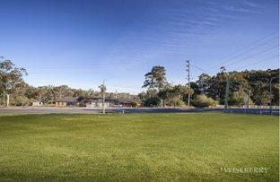58 Warnervale Road, Hamlyn Terrace NSW 2259