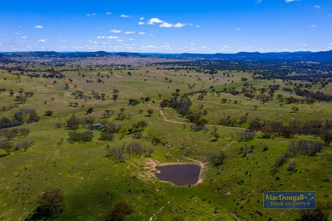 Picture of Meldon/7758 Thunderbolts Way, URALLA NSW 2358