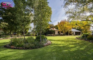 Picture of 60 Stringer  Road, Leeton NSW 2705