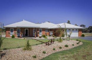 10 Burgundy Drive, Moama NSW 2731