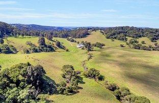 Picture of 6101 Waterfall Way, Dorrigo NSW 2453