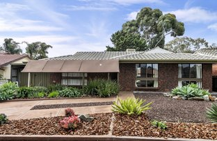 Picture of 129 Burton Road, Paralowie SA 5108