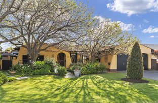 Picture of 24 Windermere Avenue, Novar Gardens SA 5040