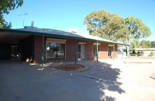 Picture of 14 Nestor Street, Stirling North SA 5710