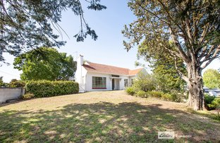Picture of 57 JENKINS TERRACE, Naracoorte SA 5271