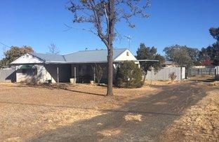 Picture of 6-8 Dubbo Street, Coonamble NSW 2829