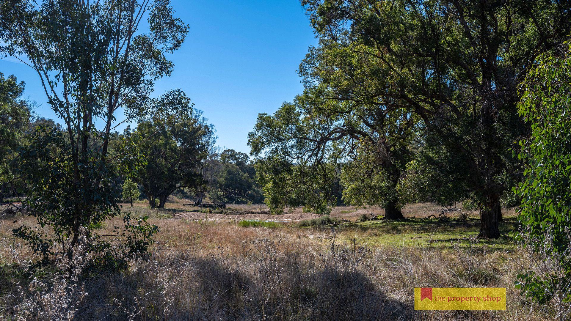 435 Kaludabah Road, Mudgee NSW 2850, Image 1