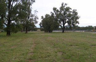 Picture of Lot 262 & 86 Wamboin Street, Gilgandra NSW 2827