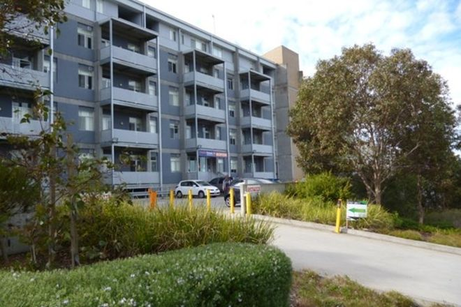 Picture of 662 Blackburn road, NOTTING HILL VIC 3168