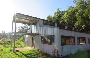 Picture of Birdwood NSW 2446