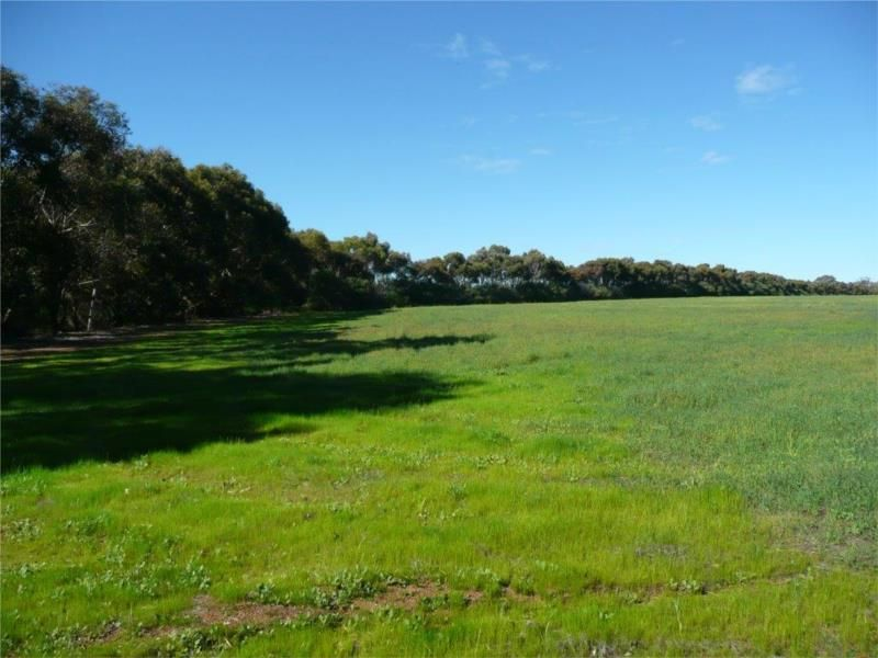 Lot 204 Chitty Road, Bakers Hill WA 6562, Image 1