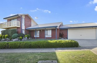 Picture of 59 Meadowvale Drive, Grovedale VIC 3216