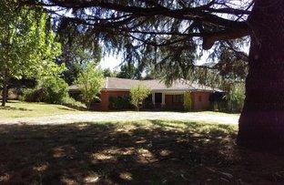 589 Cadia Road, Orange NSW 2800