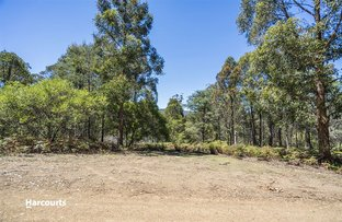 Lot 1 Fyfes Road, Mountain River TAS 7109