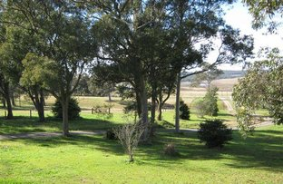 Picture of Cliftleigh NSW 2321