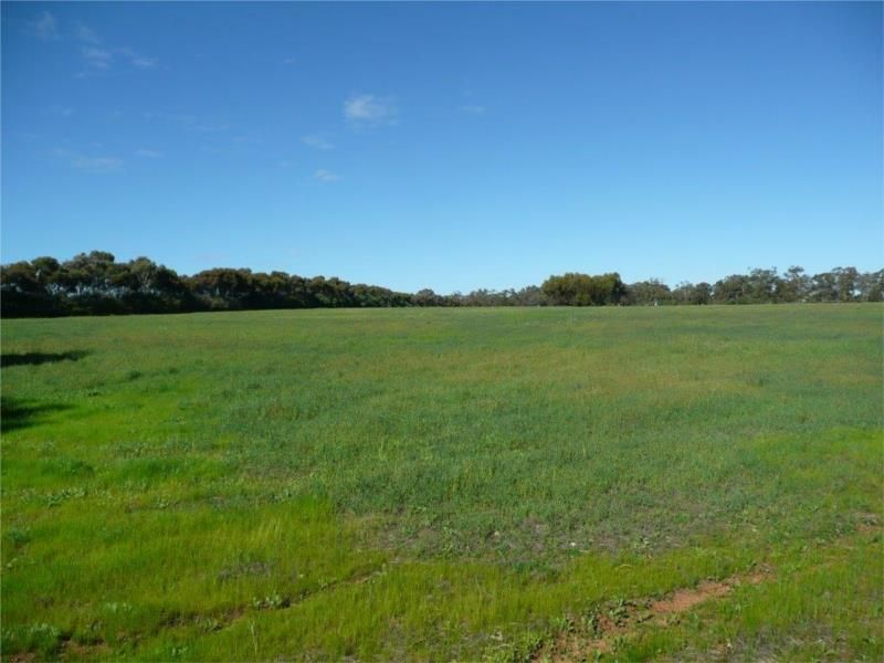 Lot 204 Chitty Road, Bakers Hill WA 6562, Image 0