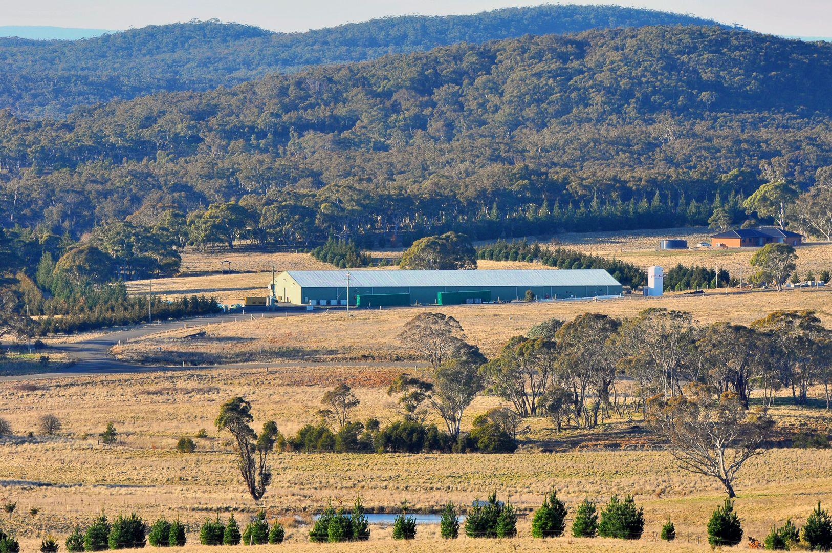 422 Tiyces Lane, Boxers Creek NSW 2580, Image 1