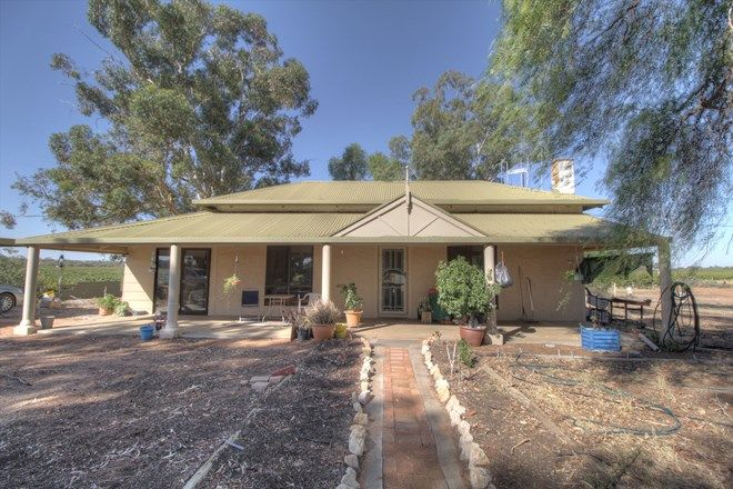 Picture of 273 Puddletown Road, WINKIE SA 5343