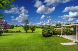 Picture of 1632 Coolamon Scenic Dr, Mullumbimby NSW 2482
