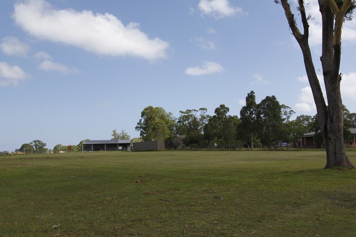 4 Pastures Drive, Medowie NSW 2318, Image 2