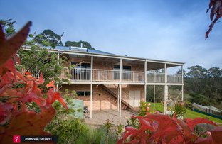 2581 Tathra-Bermagui Road, Murrah NSW 2550