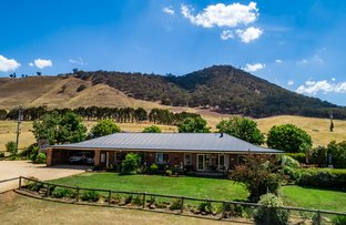 Picture of 50 Paps Lane, Mansfield VIC 3722