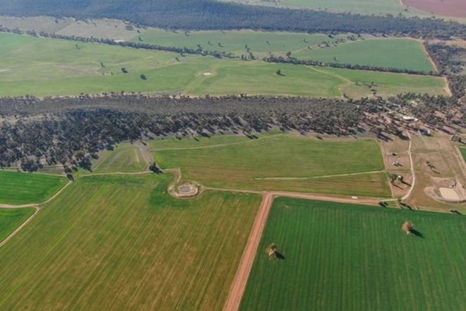 Picture of 6550 Newell Highway, ARDLETHAN NSW 2665