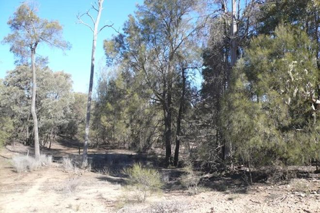 Picture of LOT 1 McCASKERS ROAD, TARA QLD 4421