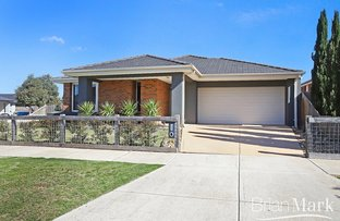 Picture of 1 Edenhope Place, Eynesbury VIC 3338