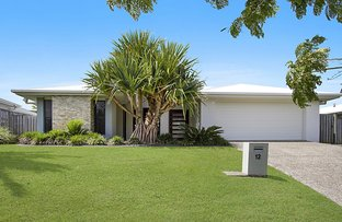 Picture of 12 Daintree Drive, Coomera QLD 4209