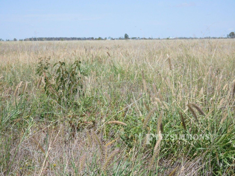 0 Burra Burri Creek Road, Pelican, Chinchilla QLD 4413, Image 0