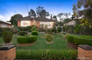 169 Bellevue Avenue, Rosanna VIC 3084