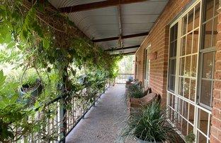 Picture of 112 Bidgee Road, Binjura NSW 2630