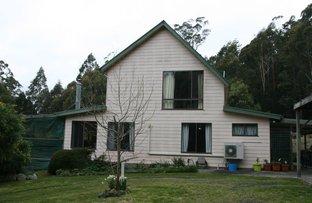 27355 Tasman Hwy, Goulds Country TAS 7216