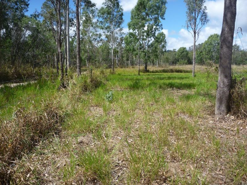 Lot 37 Wetherby Road, Mount Molloy QLD 4871, Image 0