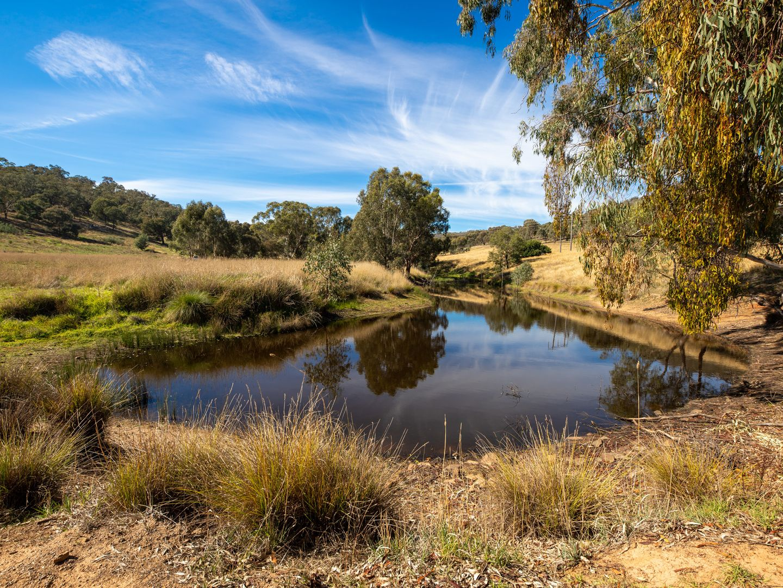 20 Stoneleigh Lane, Splitters Creek NSW 2640, Image 0