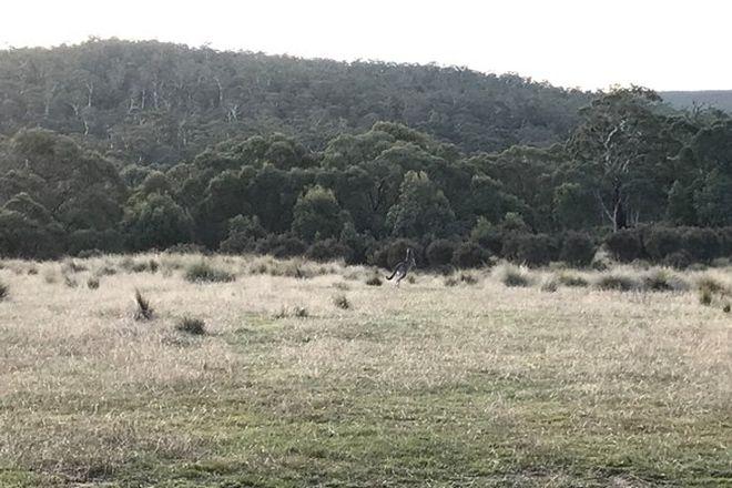 Picture of Creewah Road, CREEWAH NSW 2631