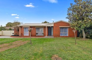 Picture of 11 Robertson Street, Epsom VIC 3551