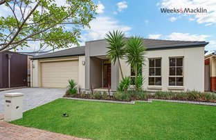 Picture of 44 Grant Ave, Gilles Plains SA 5086