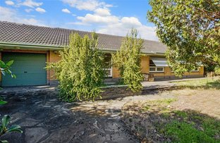 Picture of 307 Findon Road, Flinders Park SA 5025