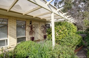 Picture of 101 Duthy Street, Malvern SA 5061