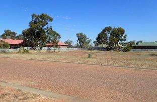 Picture of 49 Fantasia St, Lightning Ridge NSW 2834