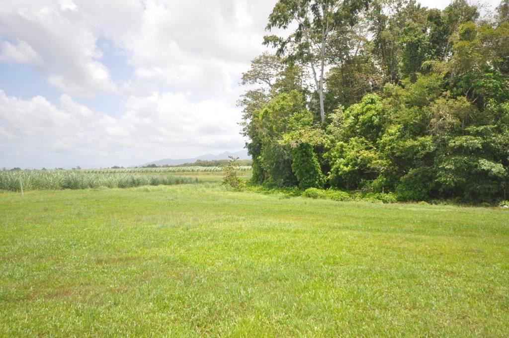247 Four Mile Road, Victoria Plantation QLD 4850, Image 1