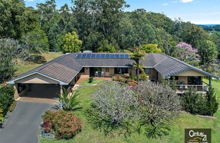 Picture of 2455 Waterfall Way, Thora, Bellingen NSW 2454