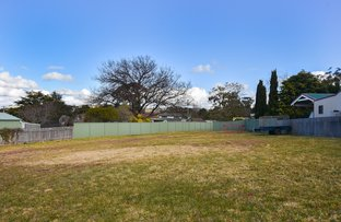 12A Willow Street, Willow Vale NSW 2575