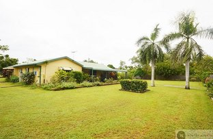 Picture of 357 Forestry  Road, Bluewater QLD 4818