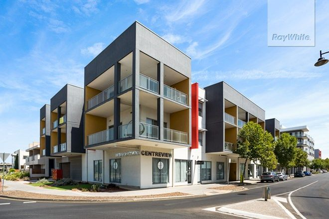 Picture of 203, 30-34 Garden Terrace, MAWSON LAKES SA 5095